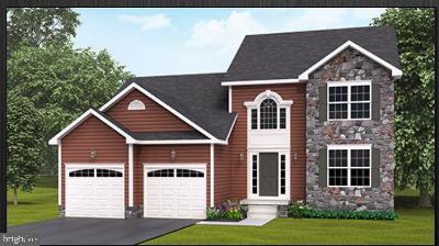 Hanover Single Family Home For Sale: 207 Fieldstone Drive