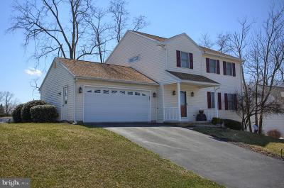 Dillsburg Single Family Home For Sale: 18 Pheasant Ridge Road