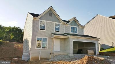 New Cumberland Single Family Home For Sale: Lot 60 Chestnut Way
