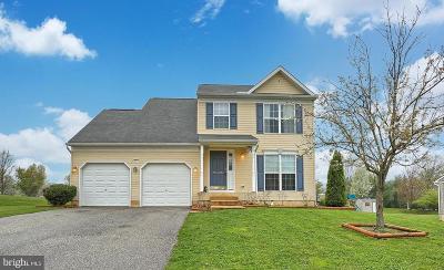York Single Family Home For Sale: 2071 Patriot Street