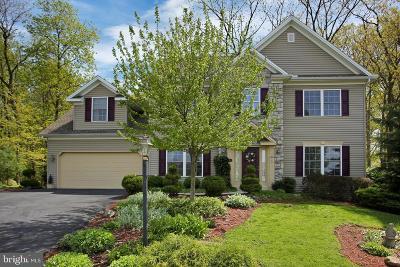Dillsburg Single Family Home For Sale: 16 Dogwood Terrace