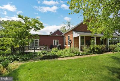 Mechanicsburg Single Family Home For Sale: 607 Moores Mountain Road