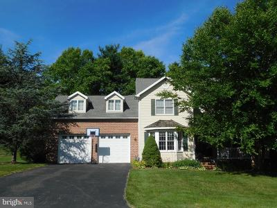 New Freedom Single Family Home For Sale: 205 Summers Lane
