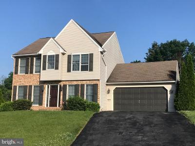 Dillsburg Single Family Home For Sale: 527 Ridgeview Drive