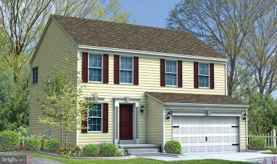 New Cumberland Single Family Home For Sale: Lot 300 Sandpiper Lane