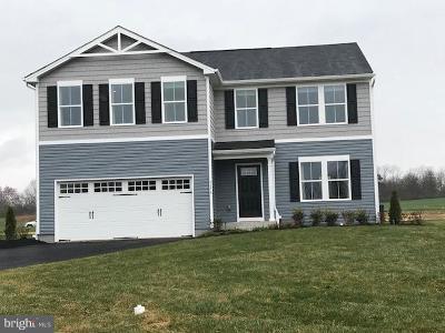 Dover Single Family Home For Sale: 3235 Pebble Run Drive
