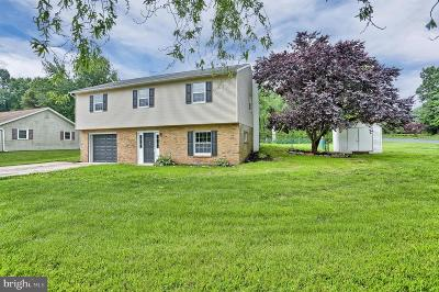 York County Single Family Home For Sale: 459 Big Spring Rd