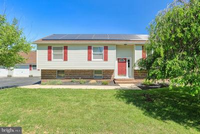 Dover Single Family Home For Sale: 3411 Schoolhouse Road