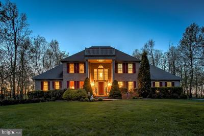 New Freedom Single Family Home For Sale: 2454 Overlook Court