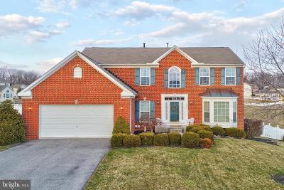 Hanover Single Family Home For Sale: 1919 Oak Hills Drive