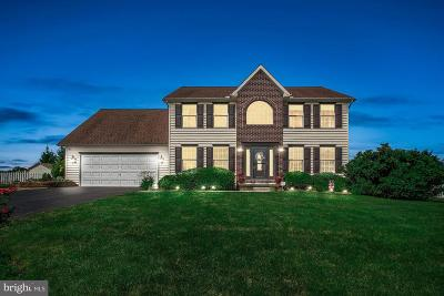 York County Single Family Home For Sale: 45 Marfield Circle