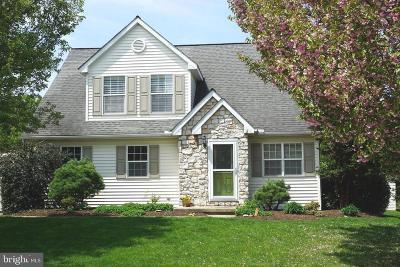 Dallastown Single Family Home For Sale: 642 Blossom Hill Lane