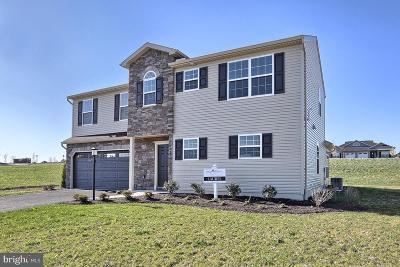 Dillsburg Single Family Home For Sale: 1124 Park Avenue