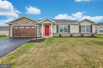 Dillsburg Single Family Home For Sale: 1166 Park Avenue