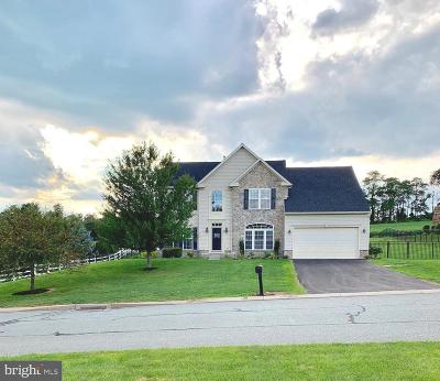 York County Single Family Home For Sale: 13 Tree Hollow Drive