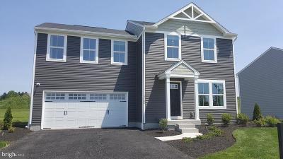 Dover Single Family Home For Sale: 3170 Pebble Run Drive