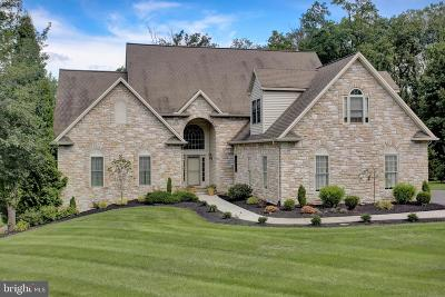 Dillsburg Single Family Home For Sale: 51 Tannery Road