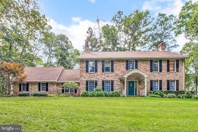Dallastown Single Family Home For Sale: 767 Valley Drive