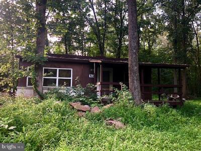 Dover Single Family Home For Sale: 115 Oak Drive