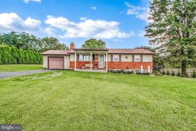 Spring Grove Single Family Home For Sale: 6286 Thoman Drive