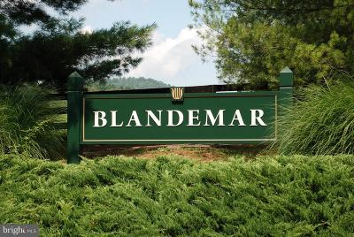 Albemarle County Residential Lots & Land For Sale: Blandemar Drive