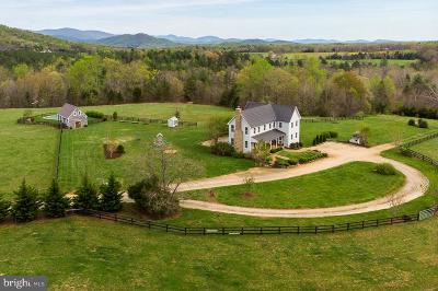 Albemarle County Single Family Home For Sale: 1204 Simmons Gap Road