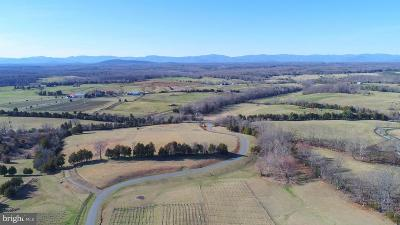 Albemarle County Residential Lots & Land For Sale: 4595 Belle Vista Drive