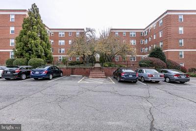 Arlington Rental For Rent: 24 Old Glebe Road S #101-C