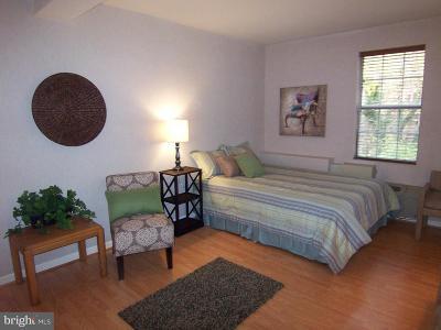 Arlington Rental For Rent: 1901 N Rhodes Street #42