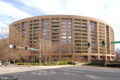 Arlington Condo For Sale: 1805 Crystal Drive #317S