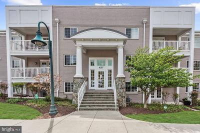 Arlington Condo For Sale: 4167 S Four Mile Run Drive #104