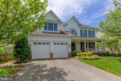 Arlington Single Family Home For Sale: 2742 N Lexington Street