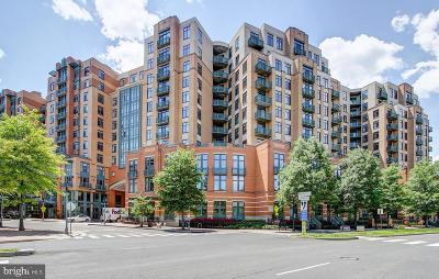 Arlington Condo For Sale: 2720 S Arlington Mill Drive #904