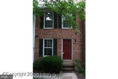 Arlington Rental For Rent: 2438 Walter Reed Drive S #C
