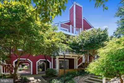 Alexandria City, Arlington County Condo For Sale: 2813 S Woodrow Street #2
