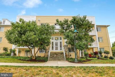 Arlington Condo For Sale: 4069 S Four Mile Run Drive #203