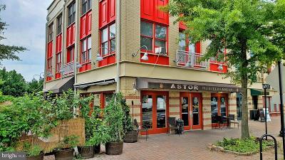 Arlington Condo For Sale: 2300 N Pershing Drive #A