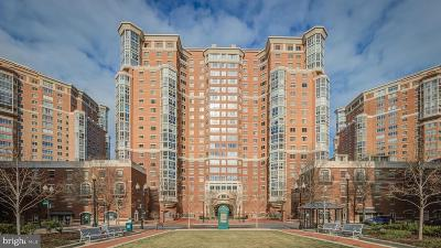 Alexandria Condo For Sale: 2151 Jamieson Avenue #1810 - 1