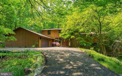 Alexandria Single Family Home For Sale: 1415 N Pegram Street