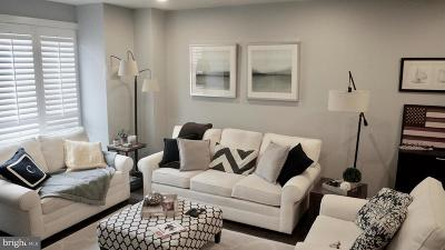 Potomac Yard, Potomac Yard Condominium, Potomac Yards Rental For Rent: 2406 Main Line Boulevard #101