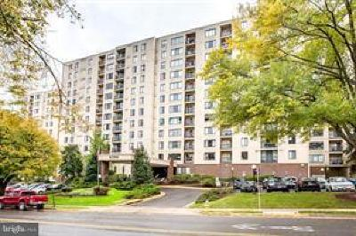 Alexandria City, Arlington County Condo For Sale: 6300 Stevenson