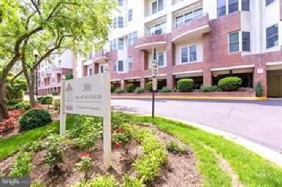 Alexandria Condo For Sale: 301 S Reynolds Street S #601