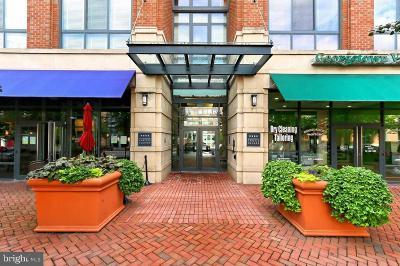 Rental For Rent: 520 John Carlyle Street #402