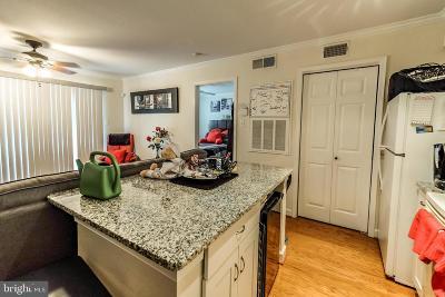 Alexandria Rental For Rent: 3306 Wyndham Circle #128
