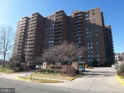 Alexandria City Condo For Sale: 200 N Pickett Street #106
