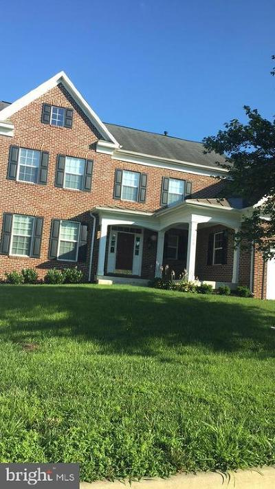 Berryville Single Family Home For Sale: 508 Page Street