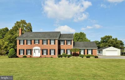 Berryville Single Family Home For Sale: 799 Crums Church Road
