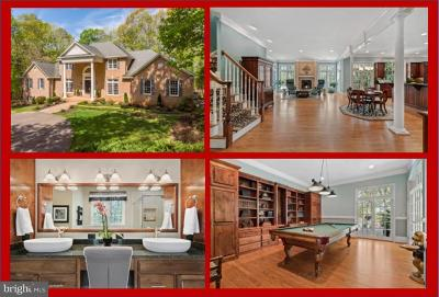 Culpeper Single Family Home For Sale: 9306 Loch Haven Lane