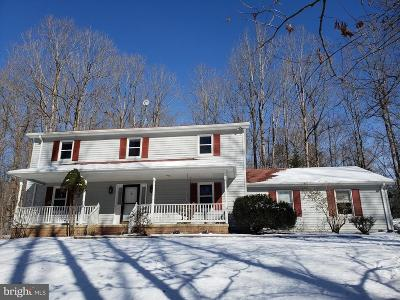 Culpeper County Single Family Home For Sale: 19225 Springs Road