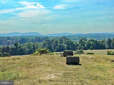 Culpeper County Farm For Sale: 17247 Rhodes